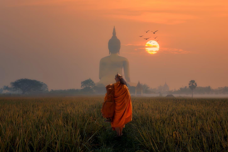 Top 5 des meilleurs livres sur le Bouddhisme